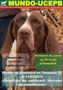 Portada_20150209