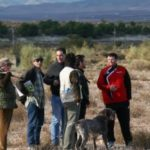 Prueba de caza salvaje 2014