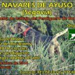 Prueba de otoño del 2016 en Navares de Ayuso (Segovia)